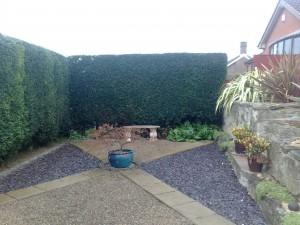 hedge trimming nottingham