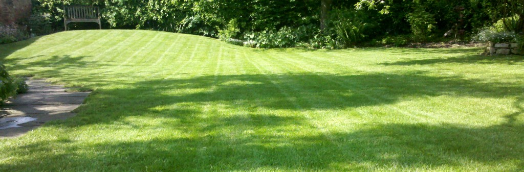 lawn mowing nottingham and southwell